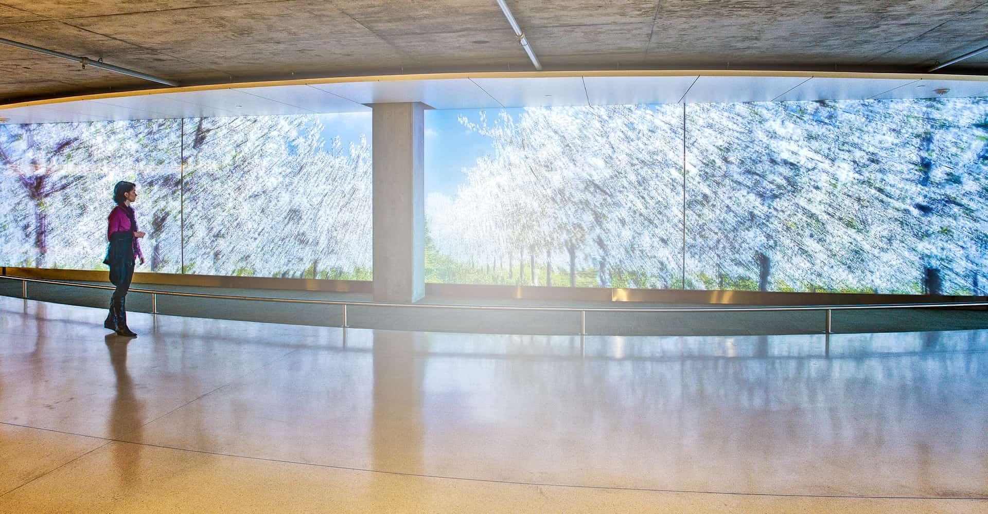 Экраны для проекторов Da-Lite